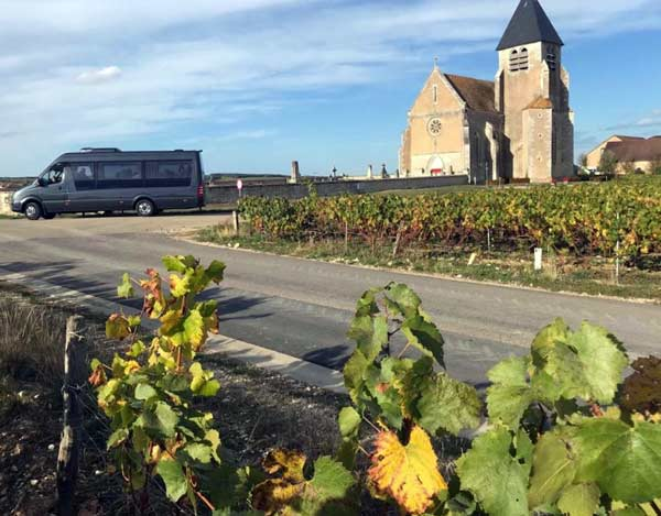 Bus in the vineyards