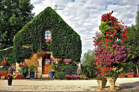 A lock house covered in flowers